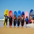 ESCUELA DE SURF LOS LOCOS